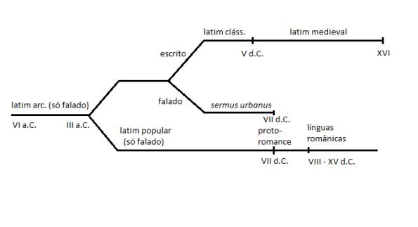 Latim - esquemático de sua evolução