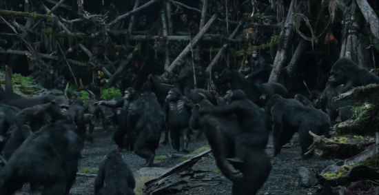 Vila dos Macacos